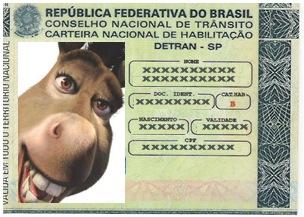 Detran: Sinonimo fraudes e enrequecimento ilicito Brasil a fora